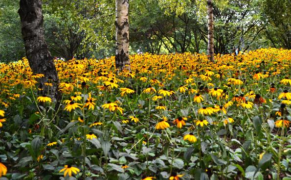 Gärten der Welt im Herbst