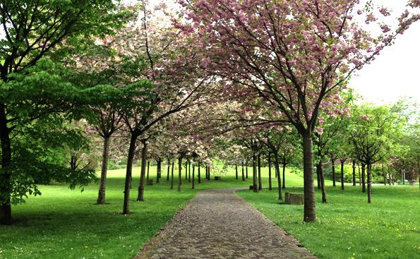gärten der welt berlin 2017