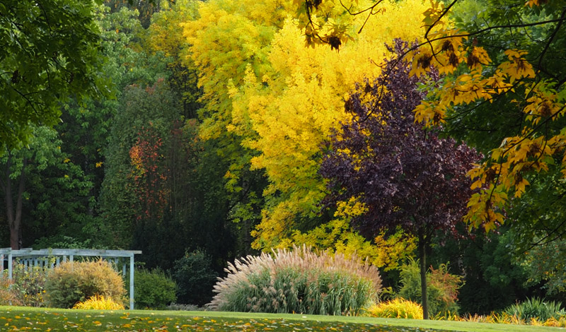Herbst in den Gärten der Welt